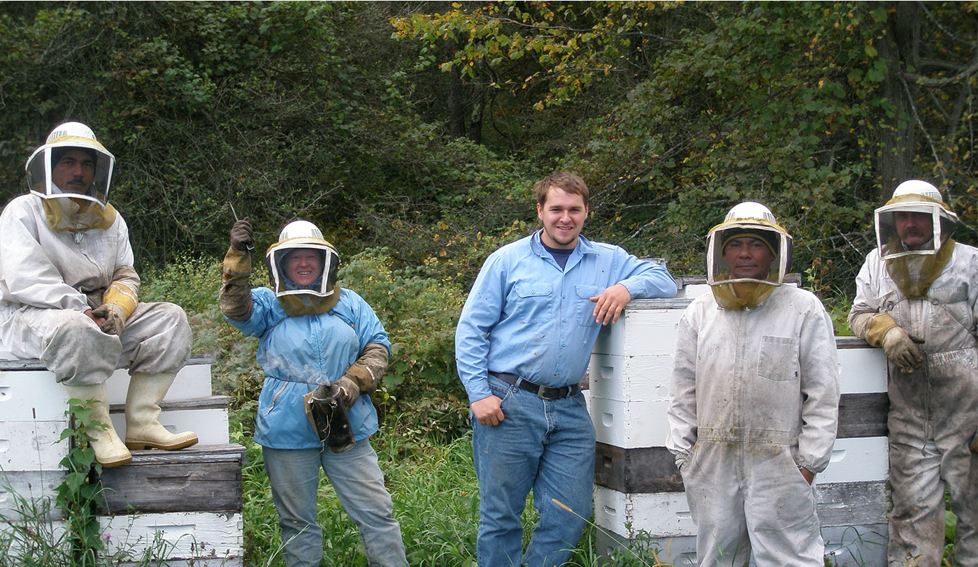 Learn Beekeeping and Honey Farming in Massachusetts